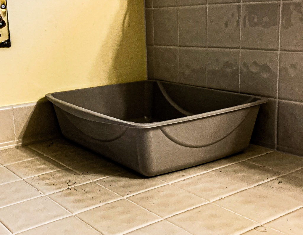 A picture of a kitty litter box adorning a tile bathroom floor.